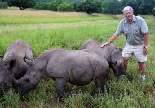 The audacious plan to airlift 80 rhinos to Australia
